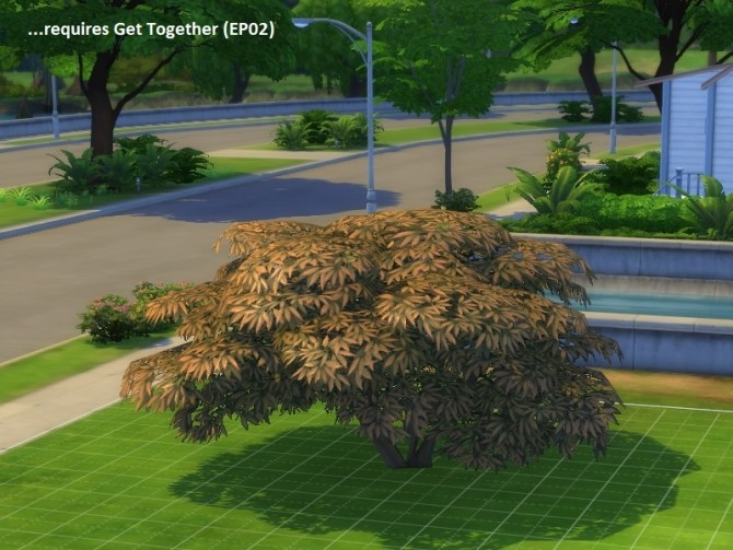 Sims 4 4 unlocked plants (2 trees and 2 shrubs) by poisson at Mod The Sims