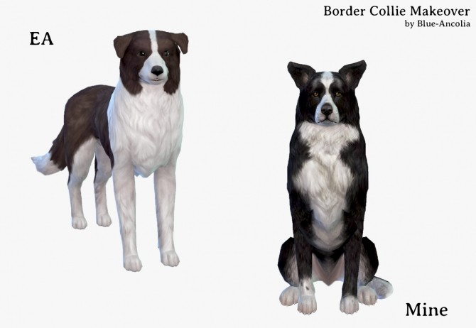 Border Collie Makeover at Blue Ancolia image 8319 670x462 Sims 4 Updates
