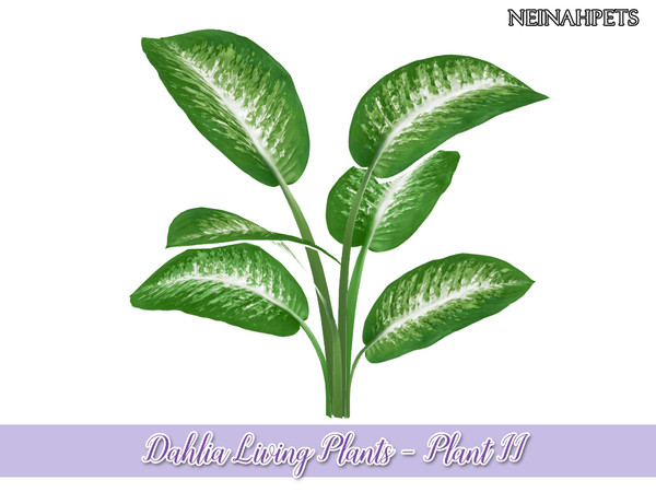 Sims 4 Dahlia Living Plant Collection by neinahpets at TSR