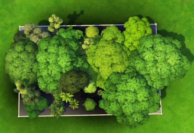 Sims 4 Basic game trees debug mode by Bloup at Sims Artists
