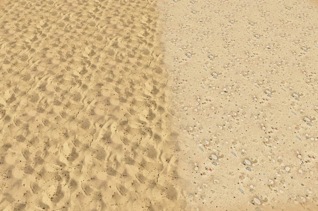 Beach Sand by sylvia60 at Blacky's Sims Zoo image 106 Sims 4 Updates