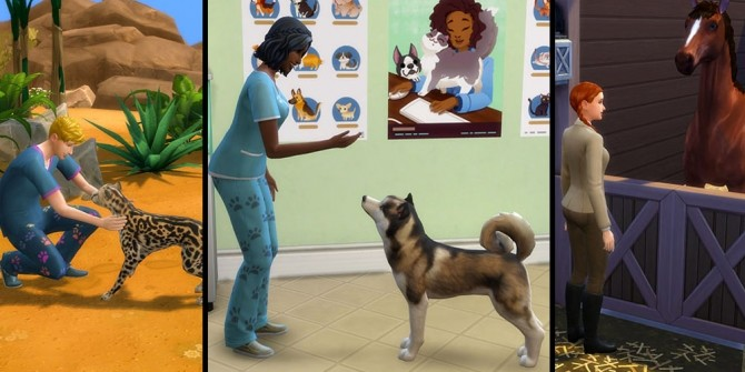 Sims 4 Animal Care Career by Simirii at Mod The Sims