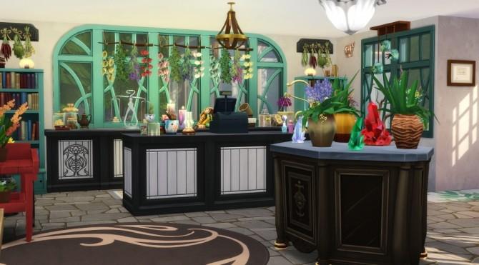 Raine's Mystical Market at Jenba Sims image 2651 670x371 Sims 4 Updates