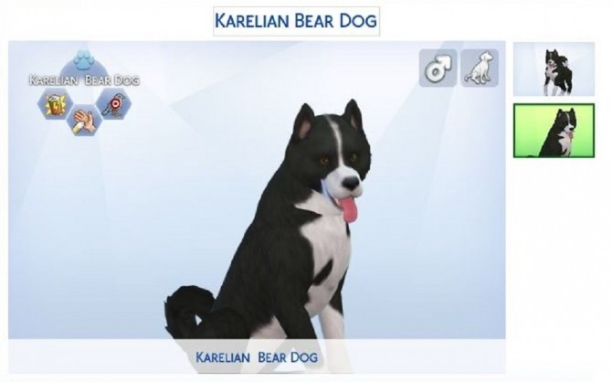 Karelian Bear Dog by ScientificallyCorrect82 at Mod The Sims image 10412 670x418 Sims 4 Updates