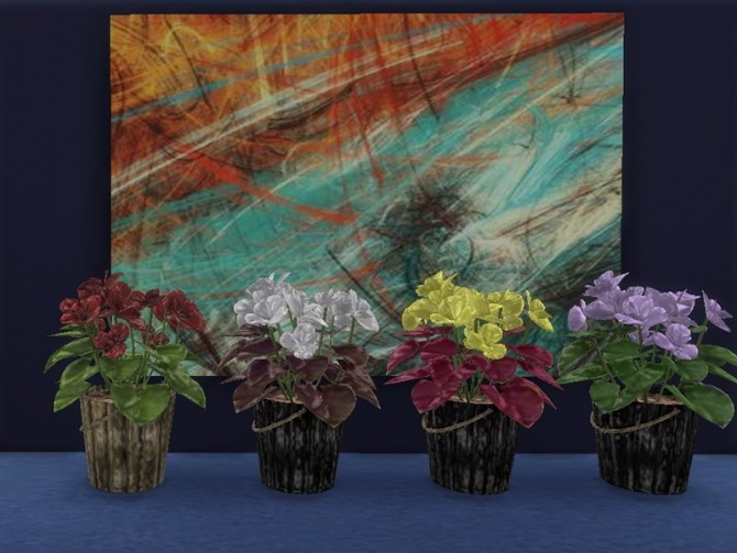 Begonia pot plant at Trudie55 image 2334 670x503 Sims 4 Updates