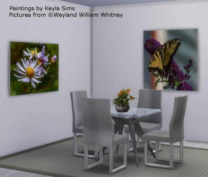 Wayland William Whitney pictures at Keyla Sims image 2582 670x572 Sims 4 Updates