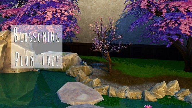 Maxis Match Retextured Blossoming Plum Tree at Teanmoon image 3841 670x377 Sims 4 Updates