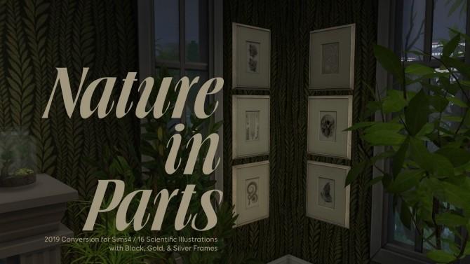 Autumn Magic mini set at b5Studio image 759 670x377 Sims 4 Updates