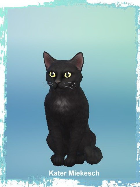 Sims 4 Luna Melodrama with Mikesch cat at All 4 Sims