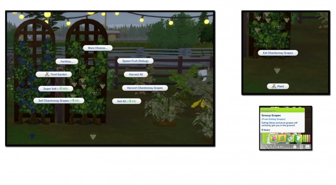 HARVESTABLE GRAPES 6 VARIETIES at Icemunmun image 2913 670x369 Sims 4 Updates