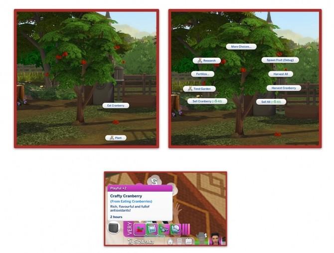 HARVESTABLE CRANBERRY at Icemunmun image 13513 670x507 Sims 4 Updates