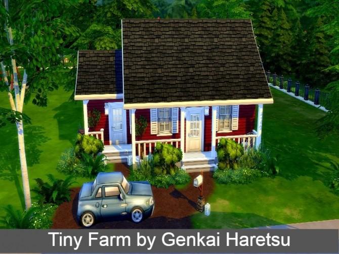Sims 4 Tiny Farm by GenkaiHaretsu at TSR