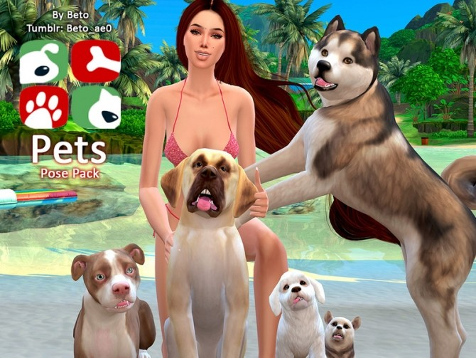 Sims 4 Pets Pose Pack by Beto ae0 at TSR