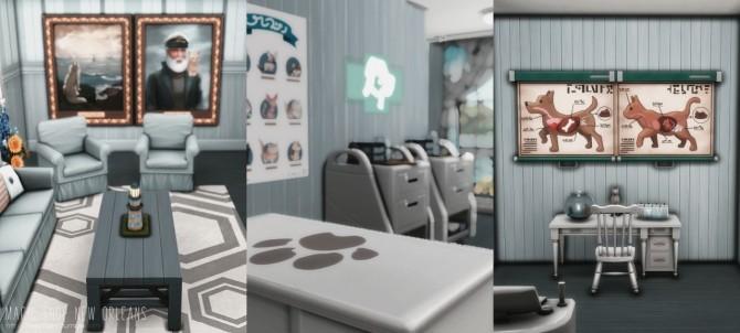 Magic Shop New Orleans at Helga Tisha image 1571 670x302 Sims 4 Updates