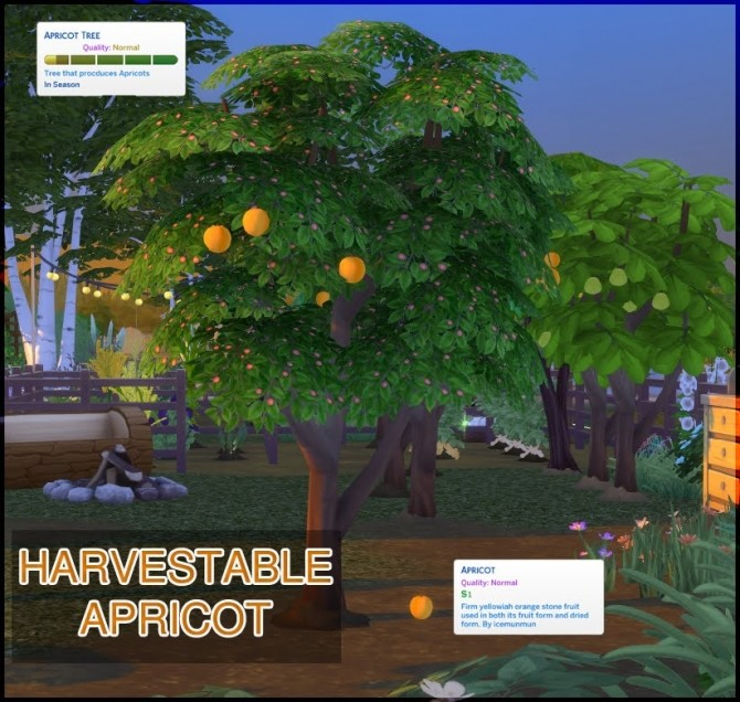 HARVESTABLE APRICOT at Icemunmun image 1807 670x636 Sims 4 Updates
