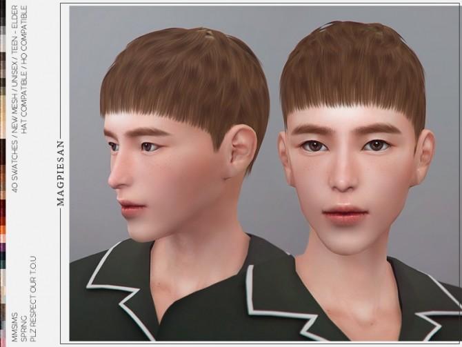 Sims 4 Spring Hair by magpiesan at TSR