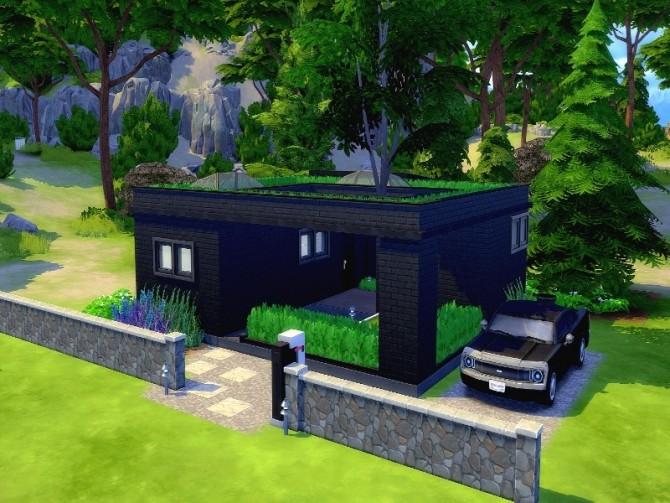 Sims 4 Atylla Black eco Windenburg starter by GenkaiHaretsu at TSR