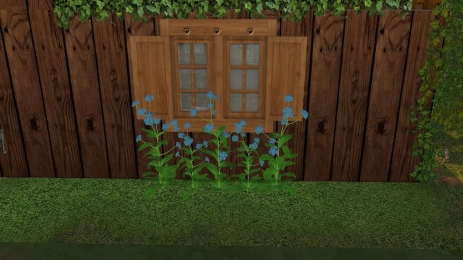 Sims 4 Forget me not blue flower by Alikis Nook at Sims 4 Studio