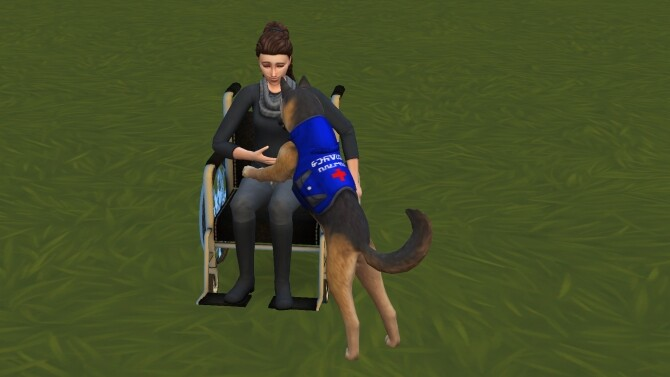 Sims 4 Service Animal Accessories by Oakstar519 at Mod The Sims
