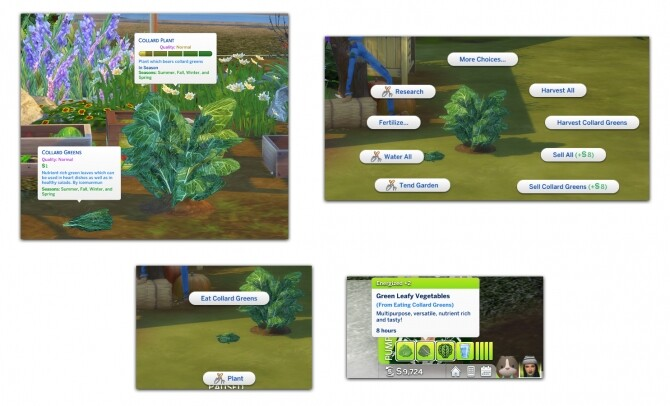 HARVESTABLE COLLARD GREENS at Icemunmun image 3921 670x406 Sims 4 Updates