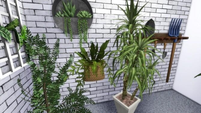 FLORIST SHOP at MODELSIMS4 image 5031 670x377 Sims 4 Updates