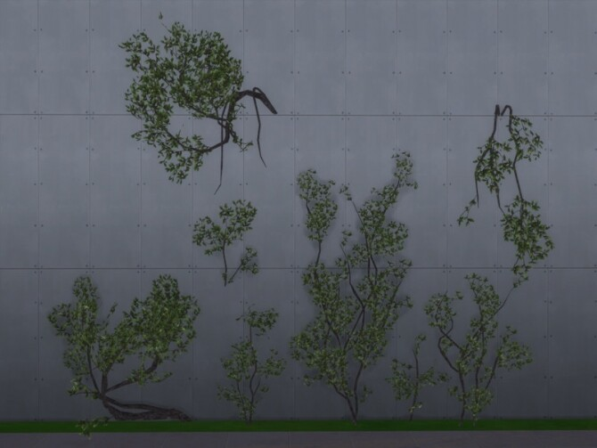 Organic Carbon set of vines, bushes and trees by sim man123 at TSR image 693 670x503 Sims 4 Updates
