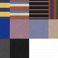 Cadet-Collar-Sweatshirt-by-Gorilla-X3-4