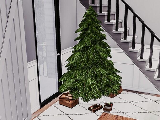 Sims 4 Realistic Christmas Tree Recolour by deardaisyxo at TSR
