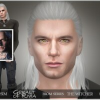 The-Witcher-Geralt-of-Rivia-by-BAkalia