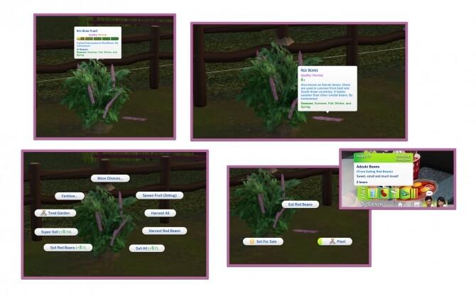 RED BEAN HARVESTABLE (ADZUKI BEAN) at Icemunmun image 45 670x417 Sims 4 Updates