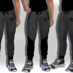 Male Sims Grey Melange Jogging Pants by Saliwa