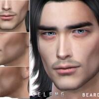 Beard N50 by Seleng
