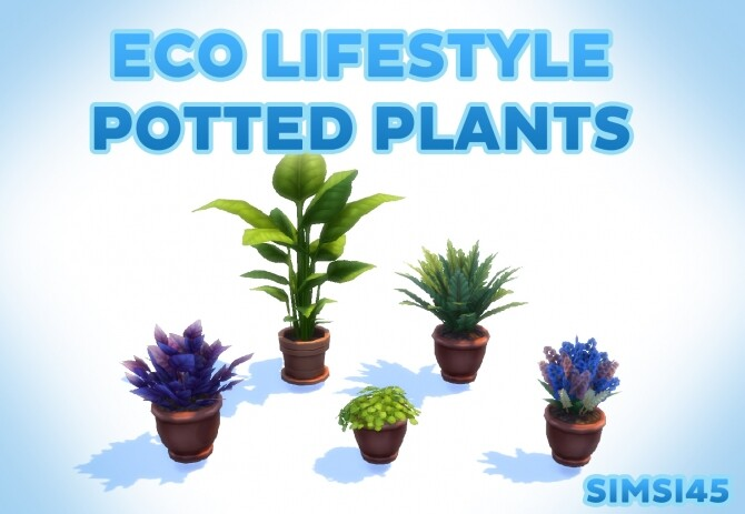 5 Eco Lifestyle Potted Plants by simsi45