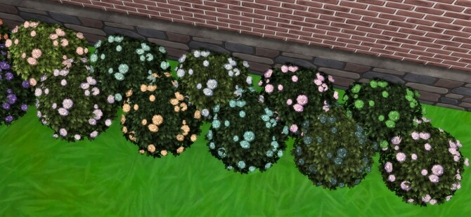 Bachelor Button Bush by Wykkyd at Mod The Sims image 1694 670x309 Sims 4 Updates