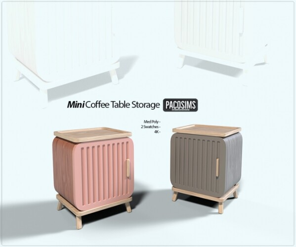 Mini Coffee Table Storage
