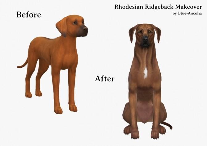 Sims 4 Rhodesian Ridgeback Makeover at Blue Ancolia