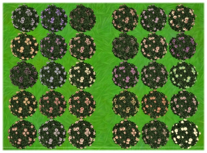 Yummy Dinner Plate Hibiscus Bush by Wykkyd at Mod The Sims image 906 670x497 Sims 4 Updates