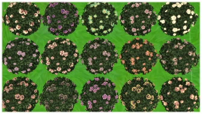 Yummy Dinner Plate Hibiscus Bush by Wykkyd at Mod The Sims image 928 670x377 Sims 4 Updates