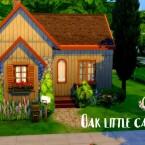 Oak little base game cabin by GenkaiHaretsu