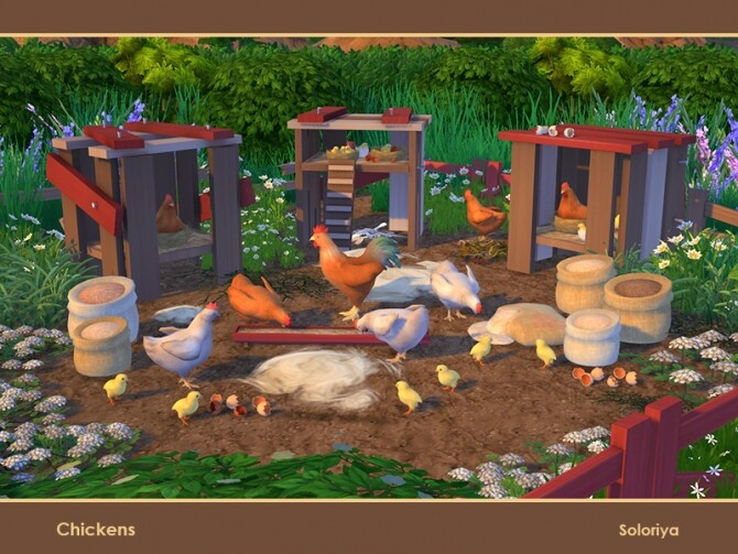 Chickens by soloriya at TSR image 113 670x503 Sims 4 Updates