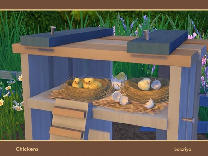 Sims 4 Chickens by soloriya at TSR