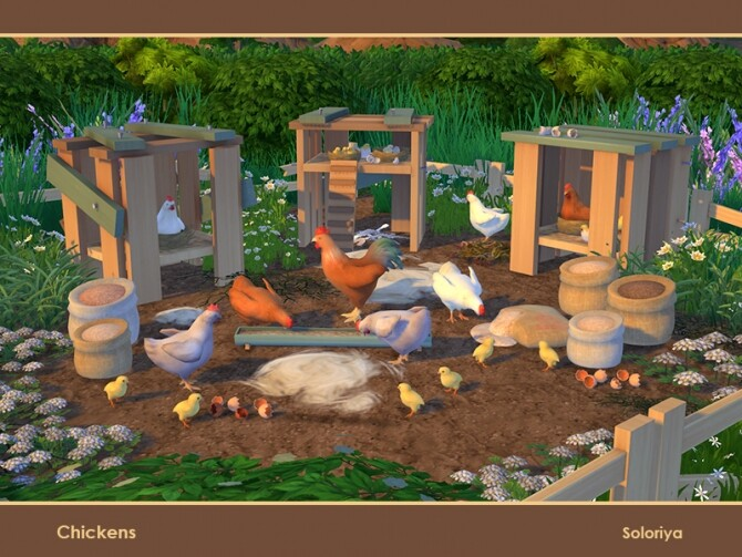 Chickens by soloriya at TSR image 119 670x503 Sims 4 Updates