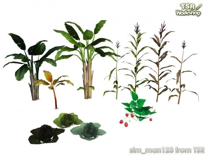 Sims 4 Farm Crops by sim man123 at TSR