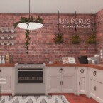 Juniperus Brick Walls by networksims