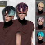 Dandelion male hair retexture by HoneysSims4