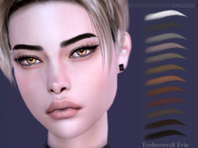 Eyebrows 18 Evie by ANGISSI