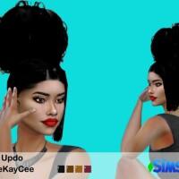 Curly Hair Updo by drteekaycee