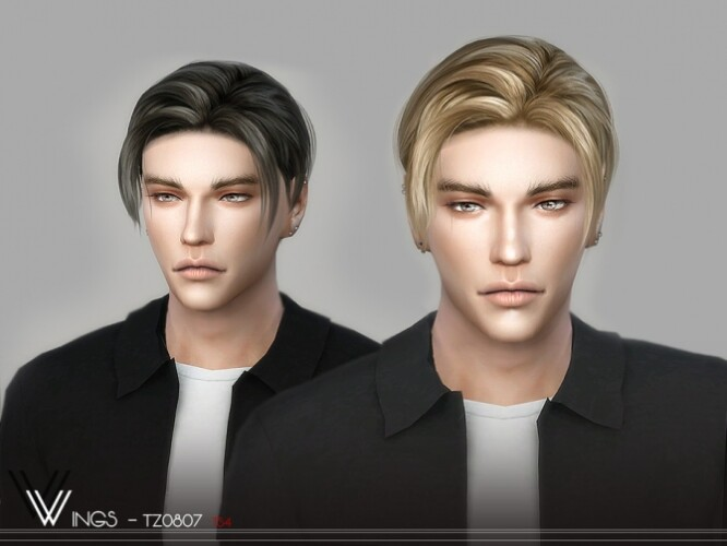 WINGS-TZ0807 hair for males by wingssims