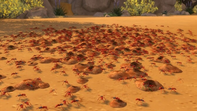 Sim Ants by flerb at Mod The Sims image 911 670x377 Sims 4 Updates