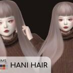 HANI HAIR
